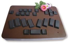 Bildbeschreibung: Das kompakte BrailleBook zeigt sich hier zum Größenvergleich mit einem Gänseblümchen.